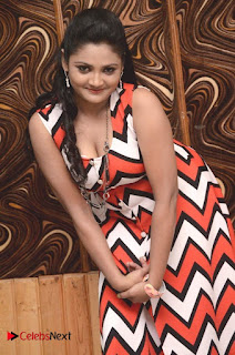 Telugu Actress Vasavi Reddy  Pictures in Short Dress  0020