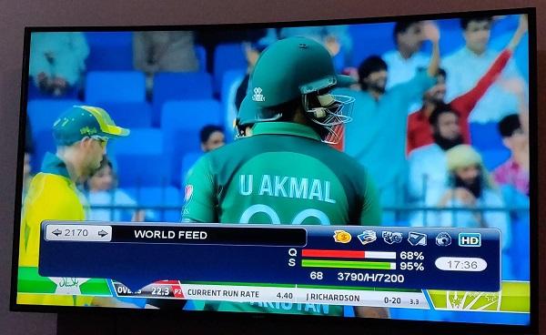 Cricket Feeds Live Logo Tezask