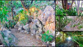 #payabay, #payabayresort, paya bay resort, peace, nature, wellness,