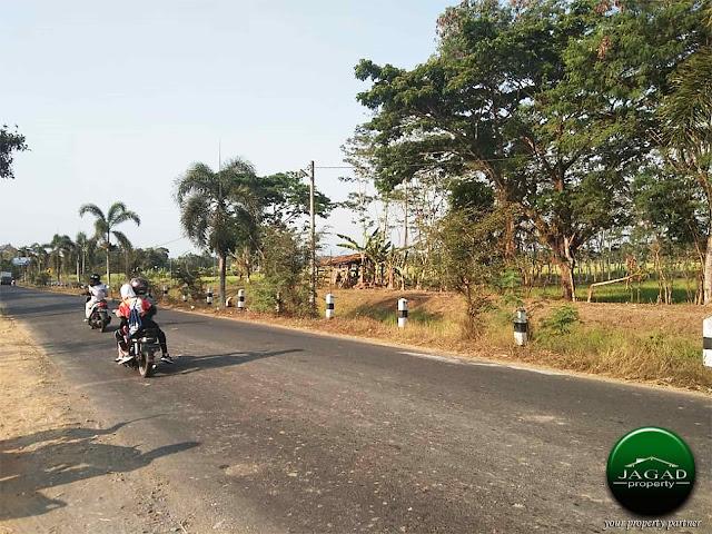 Tanah Luas tepi jalan Gedongan - Tempel