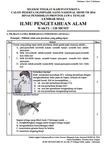 Soal Latihan, Seleksi OSN IPA Tingkat Kabupaten (1)