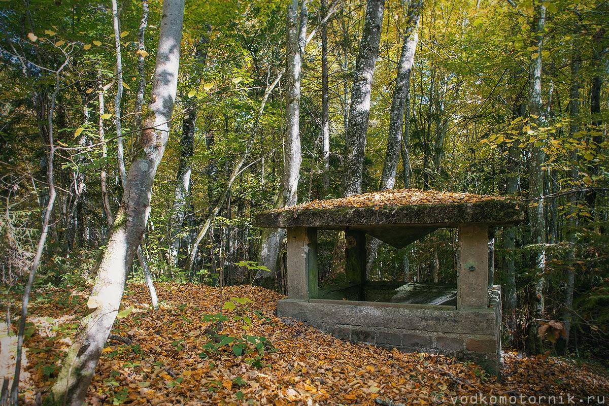 Вентиляционный канал из бункера спрятанной янтарной комнаты