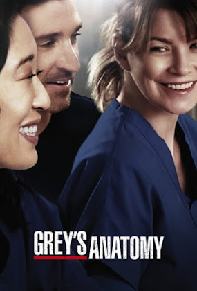 Grey's Anatomy 14ª Temporada Torrent