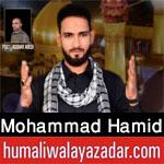 https://aliwalayazadar.blogspot.com/2020/08/sayyed-mohammad-hamid-nohay-2021.html