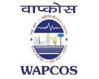 WAPCOS Jobs,latest govt jobs,govt jobs,Geophysicist jobs