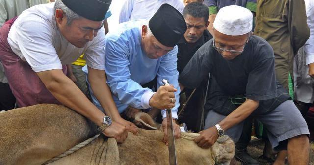 Makalah Qurban Makalah Bahasa Indonesia