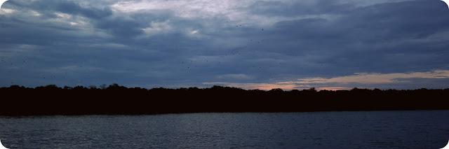 Pulau_Kalong_Komodo_Flores