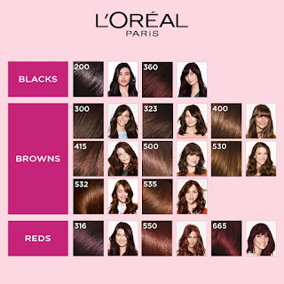 L'Oreal Paris Casting Creme Gloss Hair Color, Darkest Brown 300 (87.5g + 72ml)