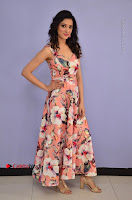 Actress Richa Panai Pos in Sleeveless Floral Long Dress at Rakshaka Batudu Movie Pre Release Function  0005.JPG