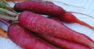 purple morcov să piardă în greutate plan dieta vegana