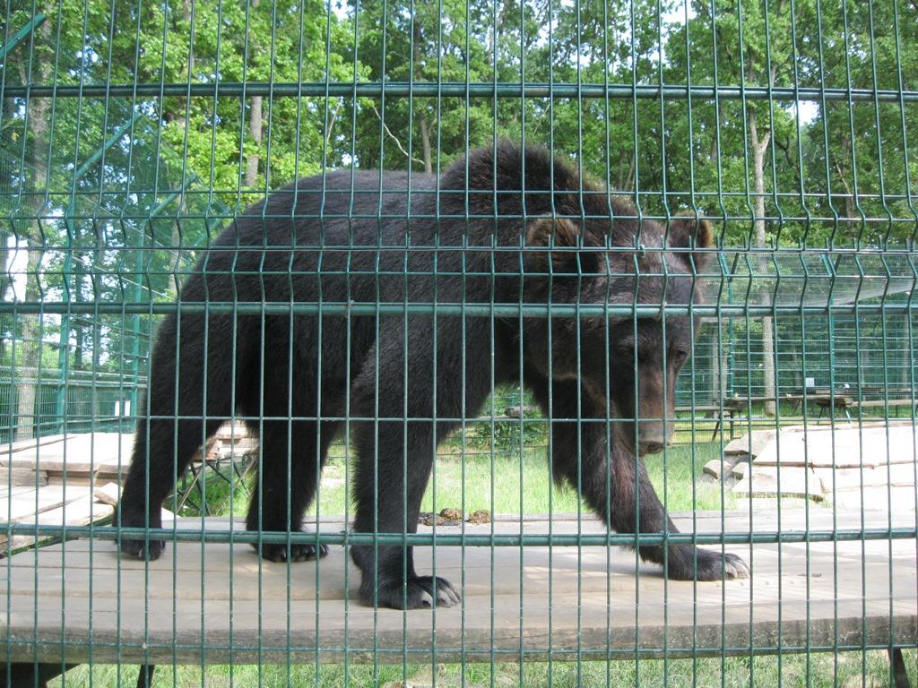 Varsovan Eläintarha