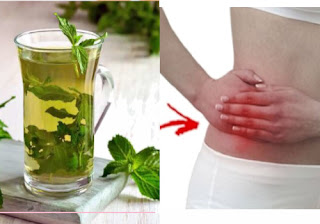 Appendicitis Home Remedies and Treatment
