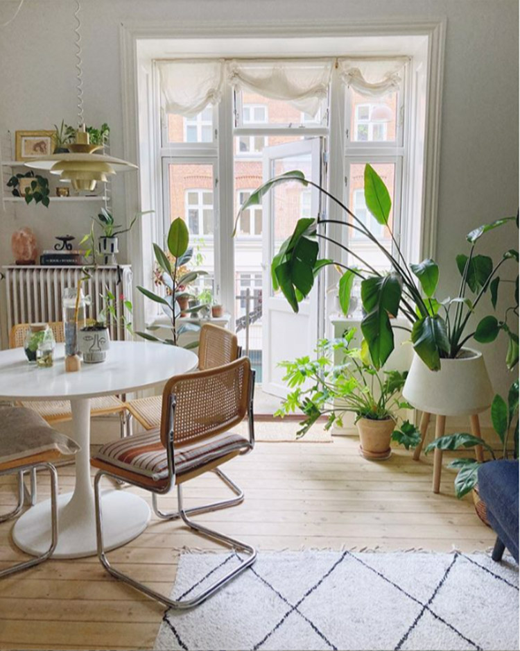 The Relaxed, Boho Copenhagen Home of a Plant Enthusiast