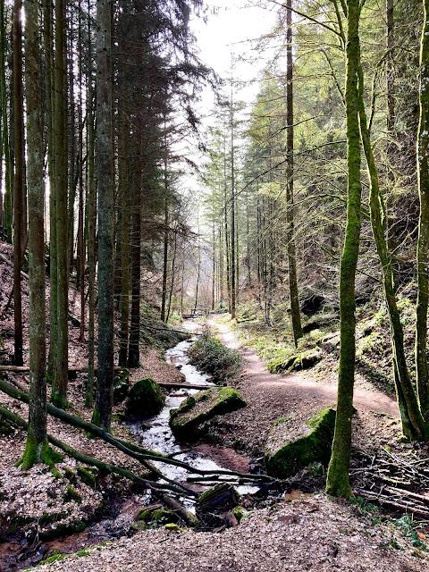 Our Outdoor Adventures in Germany - Lauren@Mizhelenscountrycottage