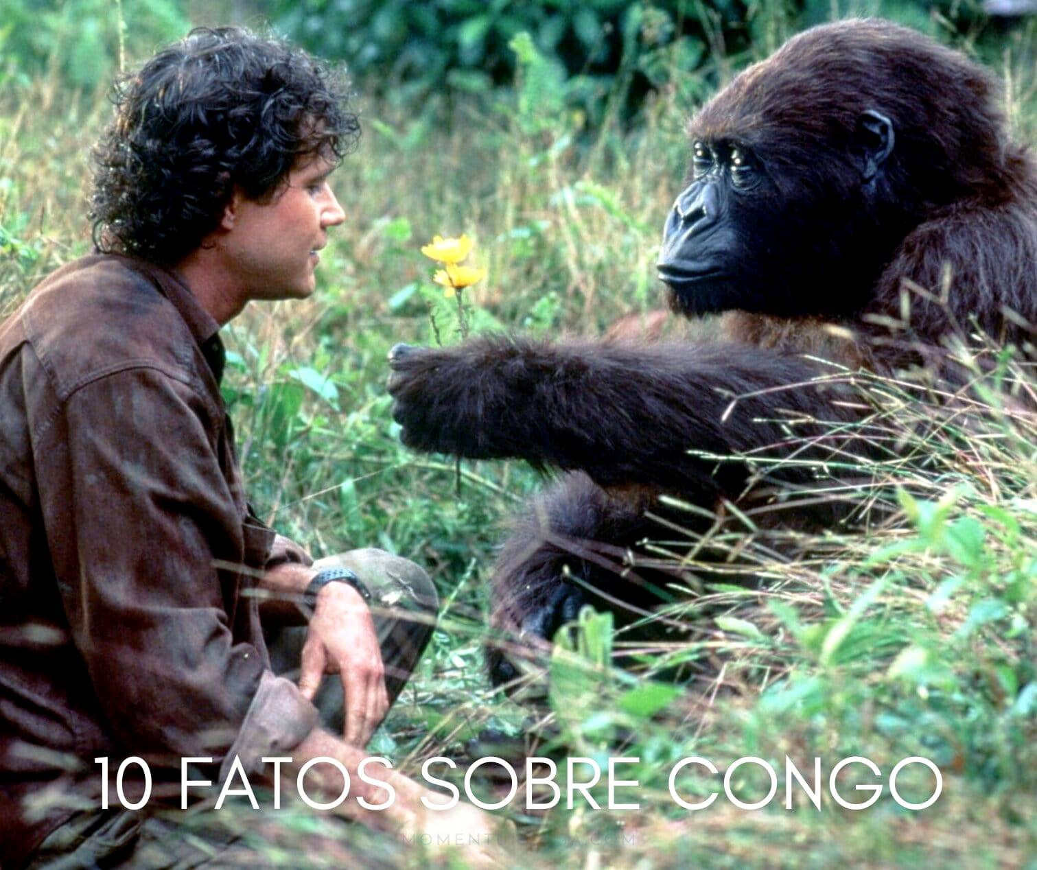 10 coisas que você não sabia sobre Congo!