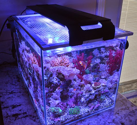 Tutorial make a diy screen top for your aquarium marine for Fish tank top cover