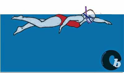Cara cepat bisa belajar berenang,belajar berenang,