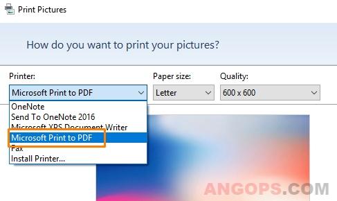 print-pdf