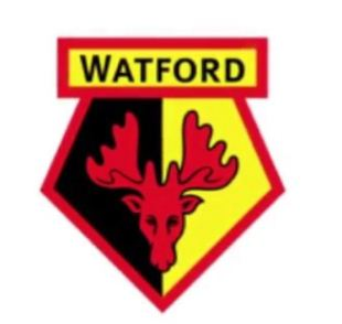 Watford transfer news who is in or out the club.