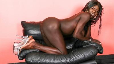 Black-tgirls – Joslyn Returns!