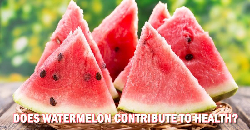 Does Watermelon Contribute to Health?