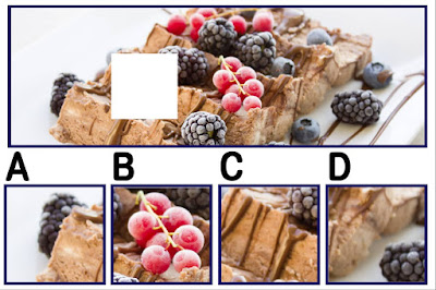 Figure: I bet your berry hungry by now! Can you find the missing piece?