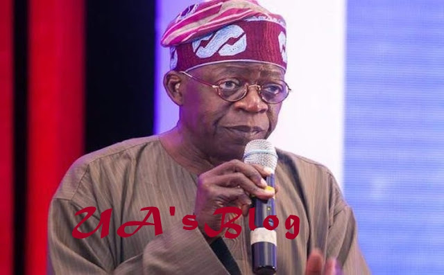 Nothing Can Stop Bola Tinubu From Becoming Nigeria's President In 2023 - Arewa Youths