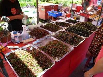 Frittierte Insekten Thailand