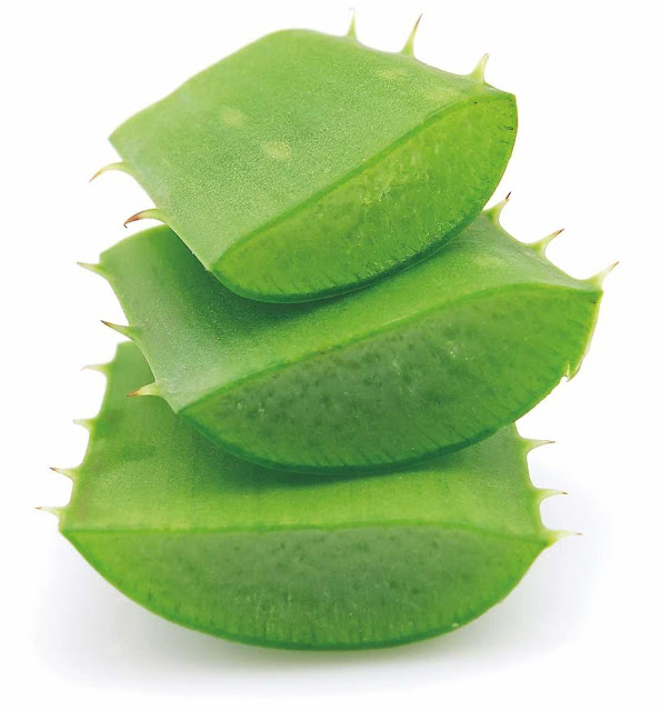 Amazing Health Benefits of an Aloe Vera Gel Drink