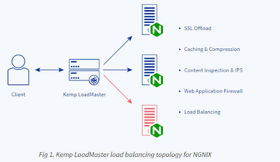 Fig 1. Kemp LoadMaster load balancing topology for NGNIX
