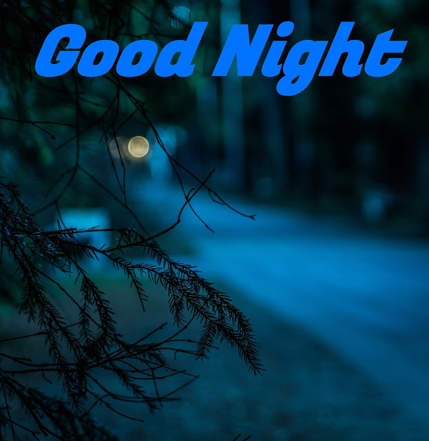good night greeting image