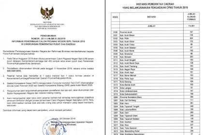 Pengumuman Resmi Formasi CPNS 2019 Semua Provinsi Di Indonesia