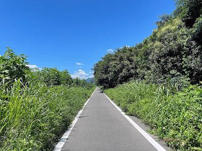桂川サイクリング