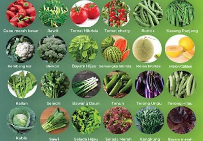 Perusahaan benih buah dan sayur Jawa Timur