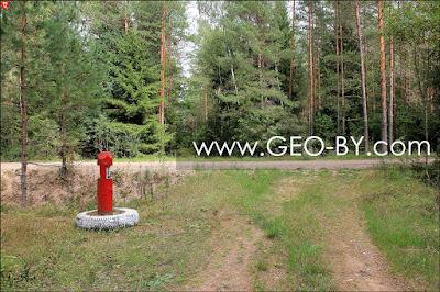 Налибокская пуща. Лесной перекресток у Вялое