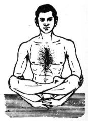 Tantra Psychology, Quantum Mind: A'sanas [Yoga Postures