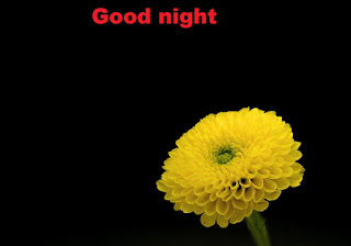 Good night simple flower images