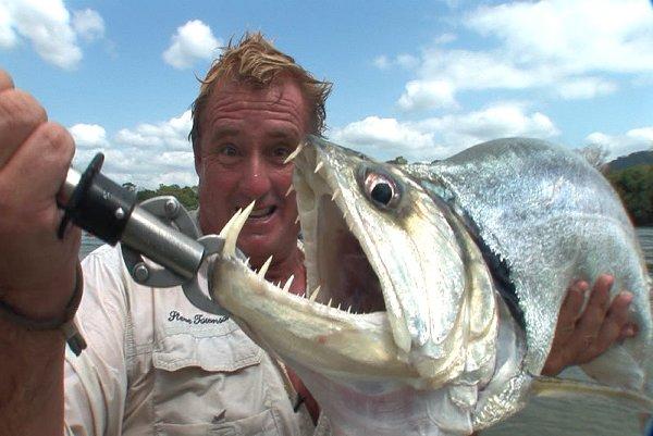 Vampire fish amazon river monsters isharenewss for Jeremy wade fishing rod