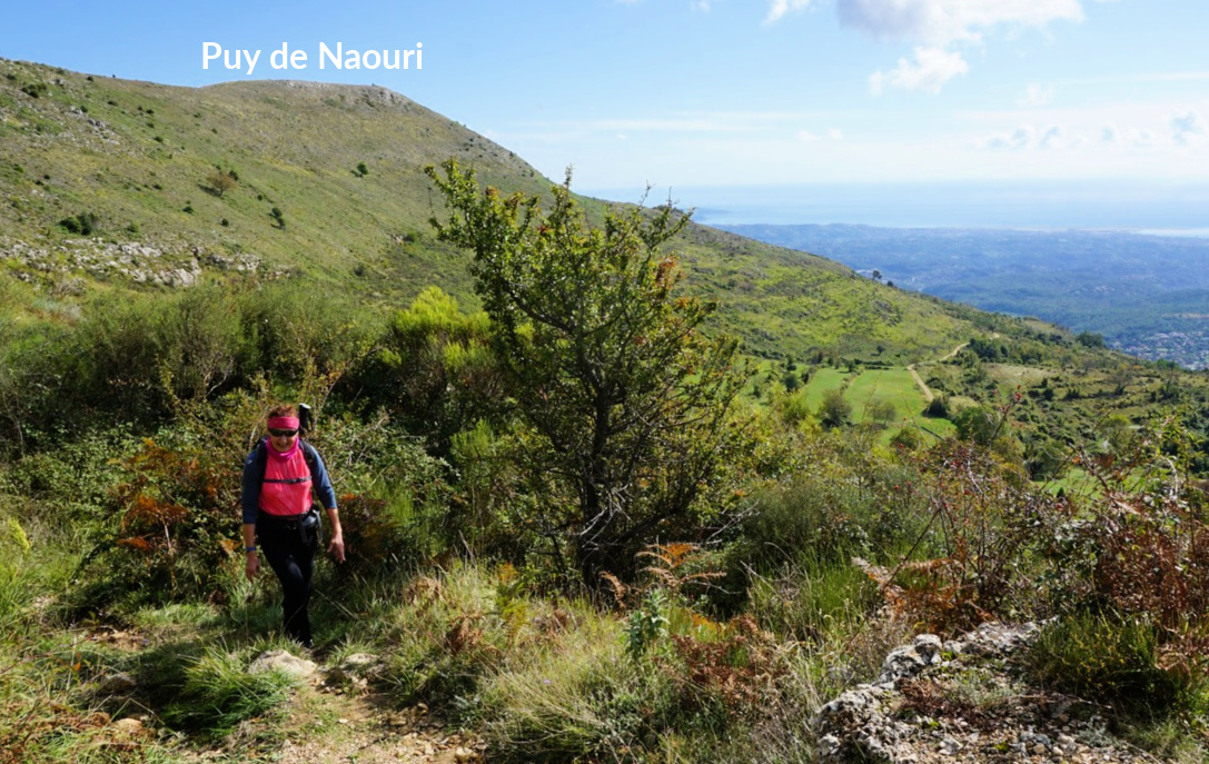 Puy de Naouri in background
