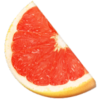 grapefruit fruit icons