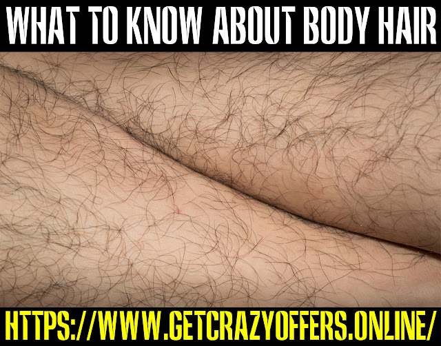 All you want to know about body hair
