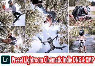 Preset Lightroom Cinematic Indie DNG & XMP
