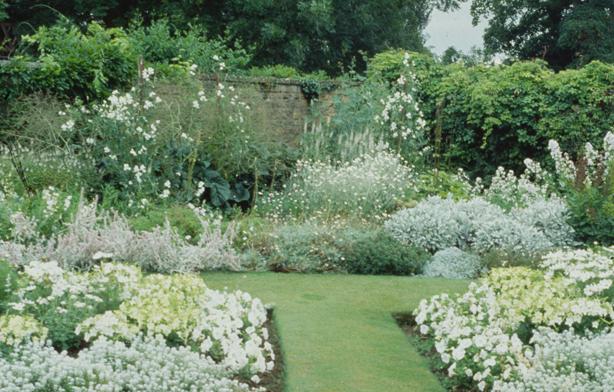 Children of the Corm: A Charleston Garden Blog: Love ...