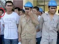 Sungguh Terlalu! Masak PLN Pun Mempekerjakan TKA China Ilegal