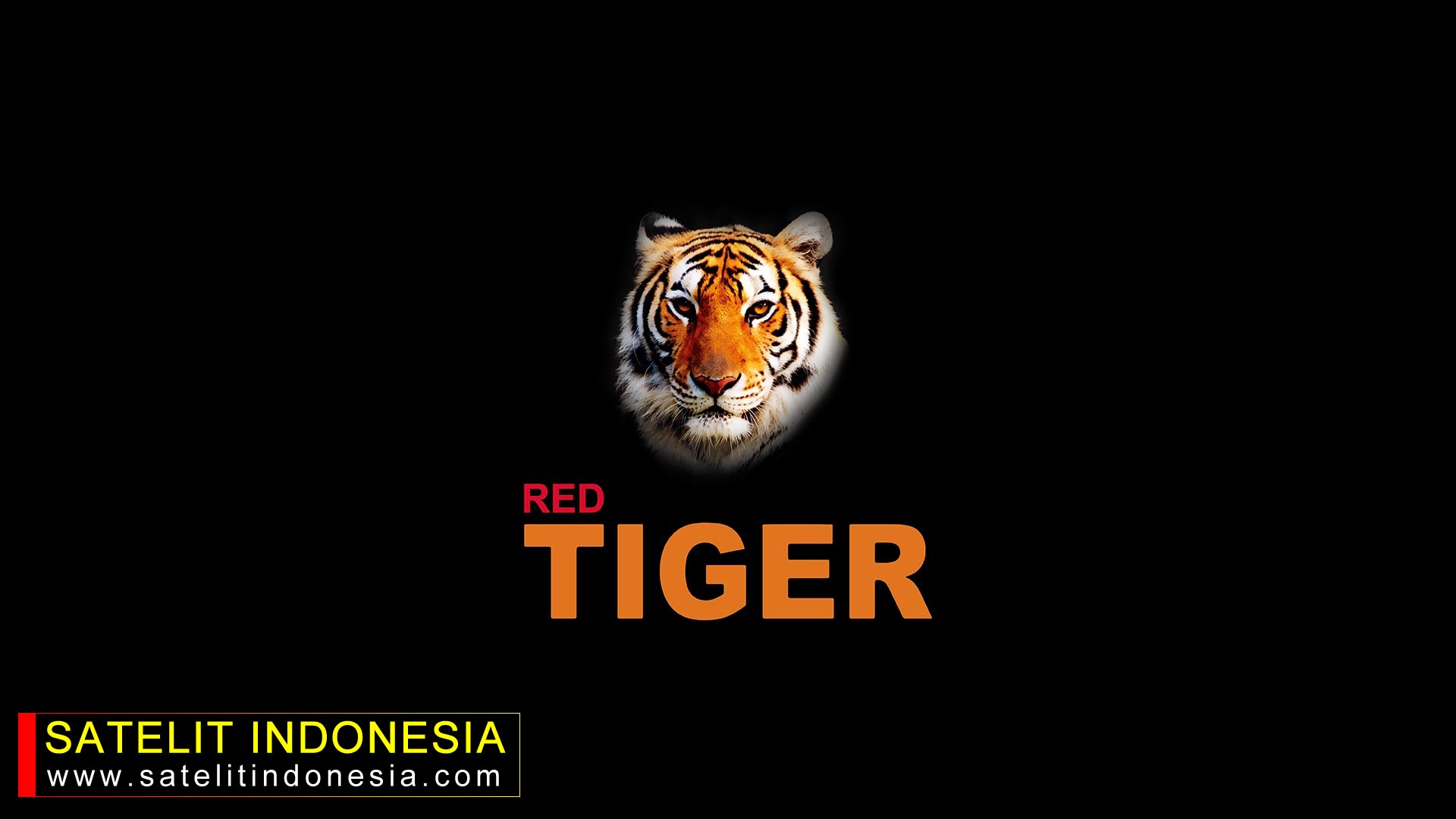 Download Software Red Tiger G999 New Update Firmware Receiver