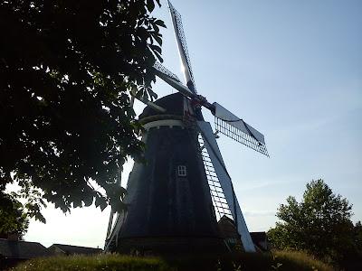 Orgonite naturale cera Olanda