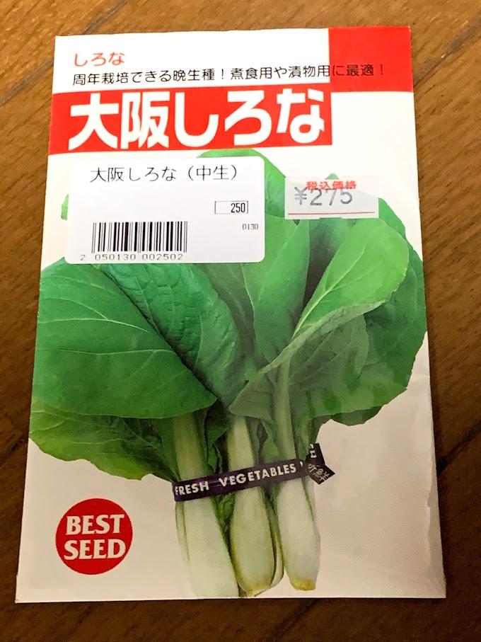 水耕栽培で伝統野菜の栽培に挑戦!
