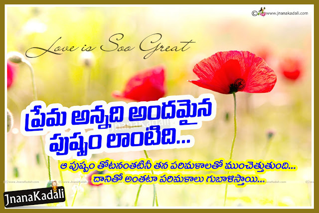 Nice Best Telugu Quotes, Quotes on Love, Best Telugu Life Value Quotes with Flower hd wallpapers