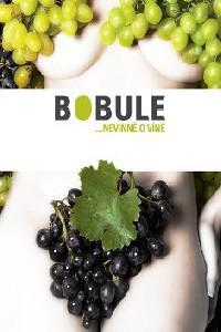 Grapes / Bobule (2008) ταινιες online seires oipeirates greek subs