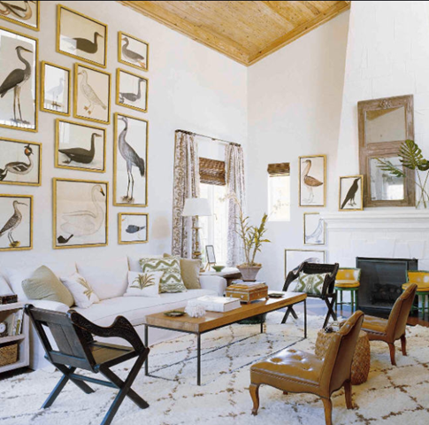 Luster Interiors For The Birds